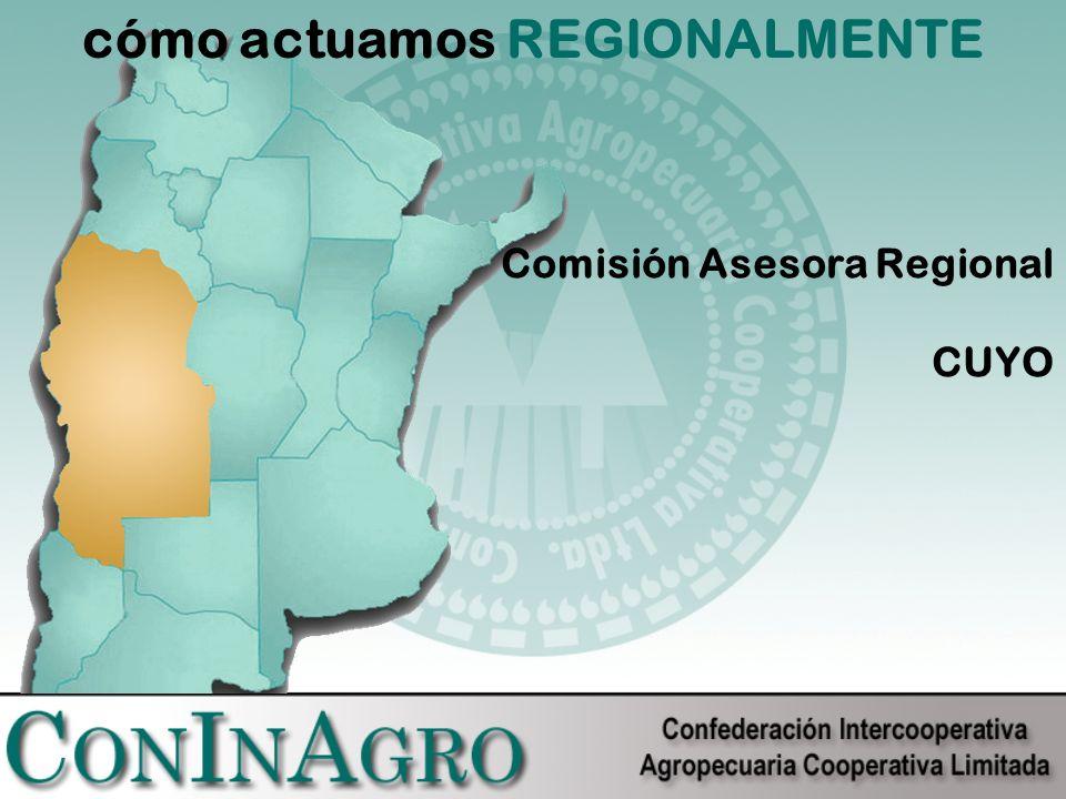 cómo actuamos REGIONALMENTE Comisión Asesora Regional CUYO