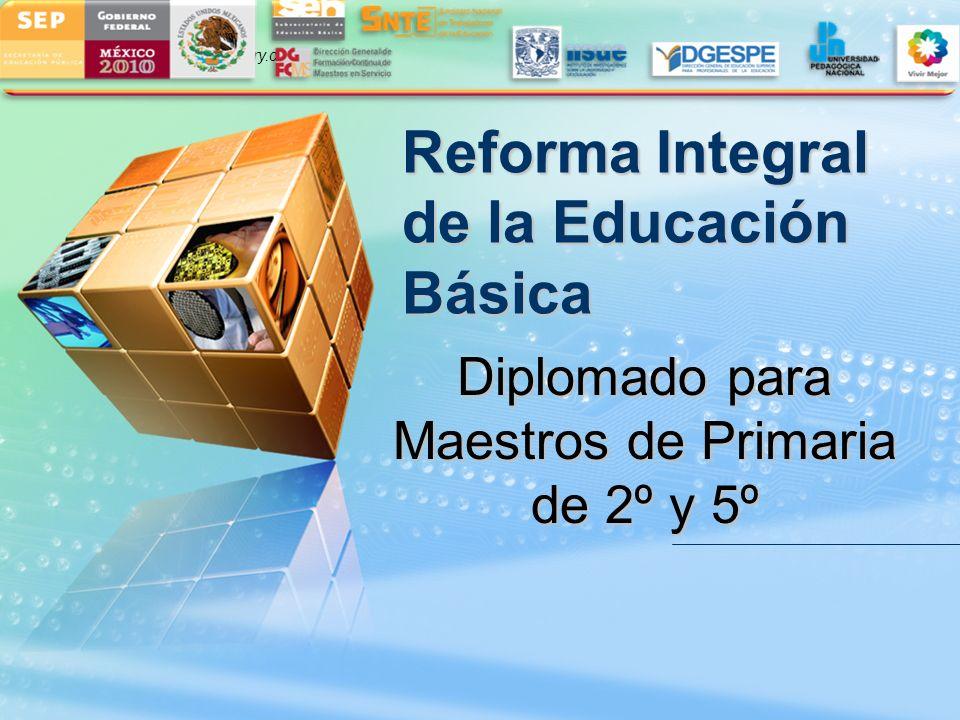 LOGO www.themegallery.com Reforma Integral de la Educación Básica Diplomado para Maestros de Primaria de 2º y 5º