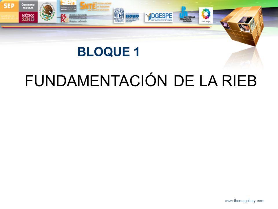 LOGO BLOQUE 1 FUNDAMENTACIÓN DE LA RIEB www.themegallery.com