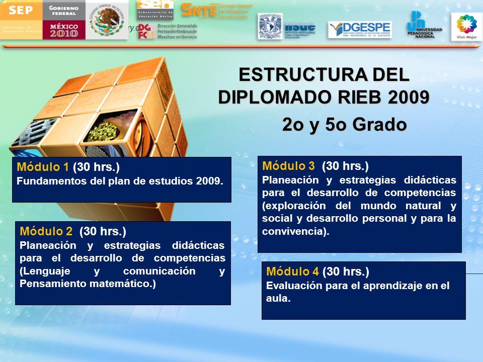 LOGO www.themegallery.com ESTRUCTURA DEL DIPLOMADO RIEB 2009 2o y 5o Grado 2o y 5o Grado Módulo 1 (30 hrs.) Fundamentos del plan de estudios 2009. Mód
