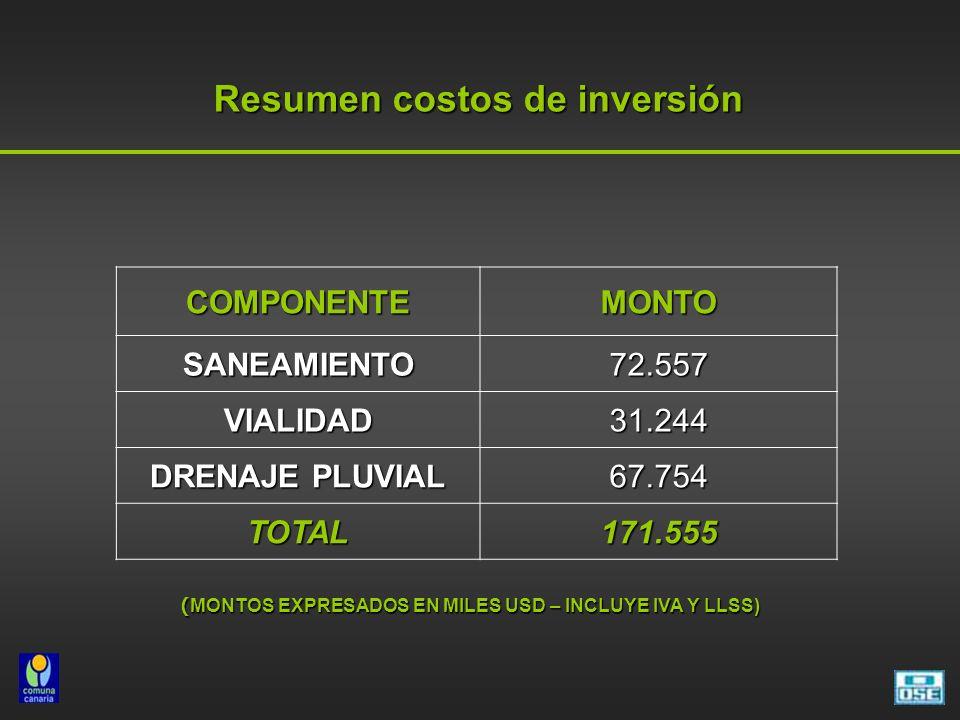 Resumen costos de inversión Resumen costos de inversión COMPONENTEMONTO SANEAMIENTO72.557 VIALIDAD31.244 DRENAJE PLUVIAL 67.754 TOTAL171.555 ( MONTOS EXPRESADOS EN MILES USD – INCLUYE IVA Y LLSS)