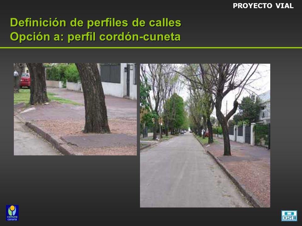 Definición de perfiles de calles Opción a: perfil cordón-cuneta PROYECTO VIAL