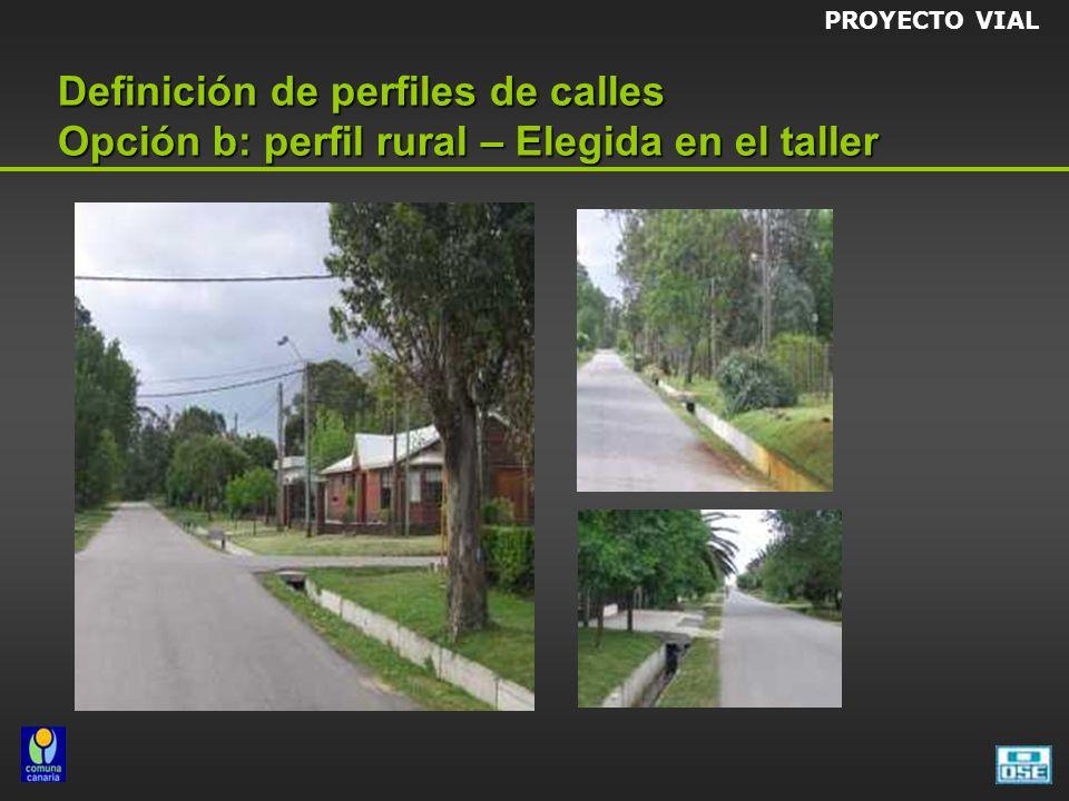 Definición de perfiles de calles Opción b: perfil rural – Elegida en el taller PROYECTO VIAL