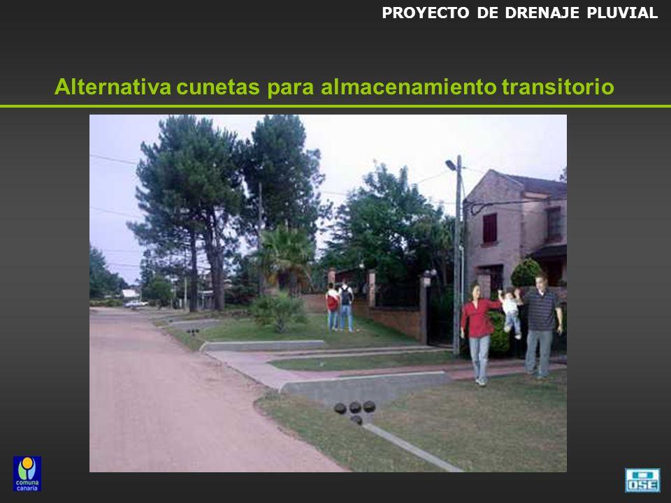 PROYECTO DE DRENAJE PLUVIAL Alternativa cunetas para almacenamiento transitorio