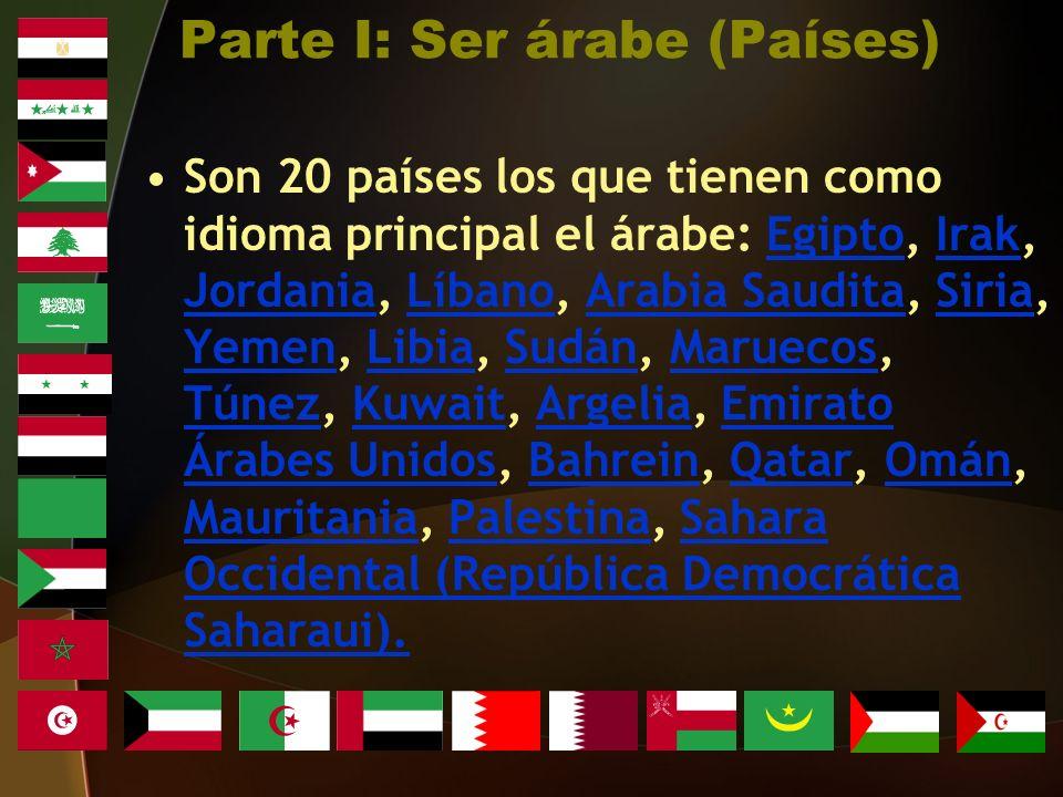Son 20 países los que tienen como idioma principal el árabe: Egipto, Irak, Jordania, Líbano, Arabia Saudita, Siria, Yemen, Libia, Sudán, Maruecos, Túnez, Kuwait, Argelia, Emirato Árabes Unidos, Bahrein, Qatar, Omán, Mauritania, Palestina, Sahara Occidental (República Democrática Saharaui).EgiptoIrak JordaniaLíbanoArabia SauditaSiria YemenLibiaSudánMaruecos TúnezKuwaitArgeliaEmirato Árabes UnidosBahreinQatarOmán MauritaniaPalestinaSahara Occidental (República Democrática Saharaui).