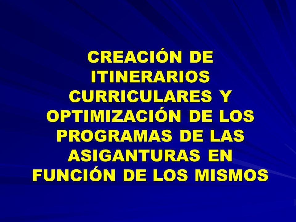 CREACIÓN DE ITINERARIOS CURRICULARES Y OPTIMIZACIÓN DE LOS PROGRAMAS DE LAS ASIGANTURAS EN FUNCIÓN DE LOS MISMOS