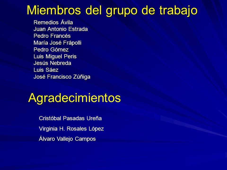 Miembros del grupo de trabajo Remedios Ávila Juan Antonio Estrada Pedro Francés María José Frápolli Pedro Gómez Luis Miguel Peris Jesús Nebreda Luis S