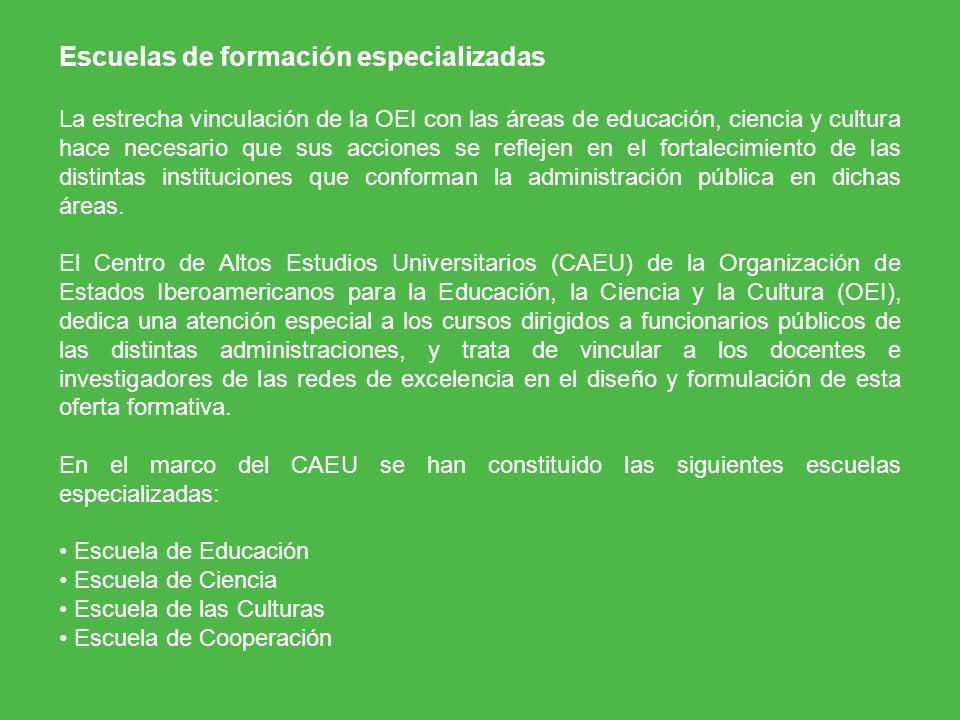 Escuelas de formación especializadas La estrecha vinculación de la OEI con las áreas de educación, ciencia y cultura hace necesario que sus acciones s