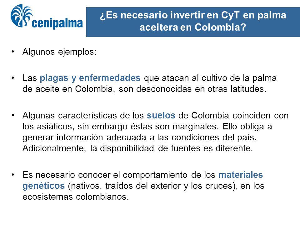¿Es necesario invertir en CyT en palma aceitera en Colombia? Algunos ejemplos: Las plagas y enfermedades que atacan al cultivo de la palma de aceite e