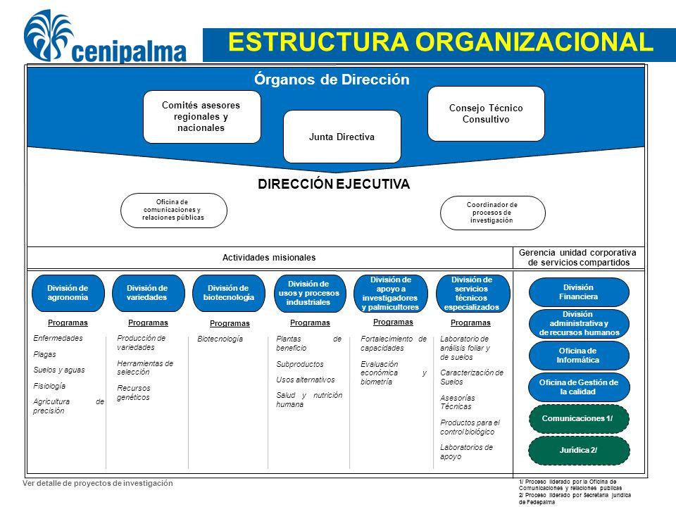 4 Junta Directiva Consejo Técnico Consultivo Comités asesores regionales y nacionales Órganos de Dirección Gerencia unidad corporativa de servicios co