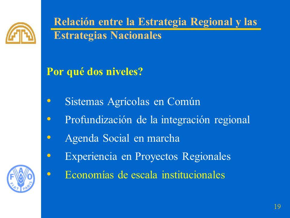 19 Relación entre la Estrategia Regional y las Estrategias Nacionales Por qué dos niveles? Sistemas Agrícolas en Común Profundización de la integració