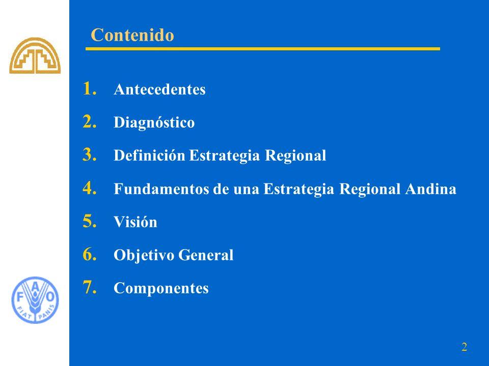 2 1. Antecedentes 2. Diagnóstico 3. Definición Estrategia Regional 4. Fundamentos de una Estrategia Regional Andina 5. Visión 6. Objetivo General 7. C