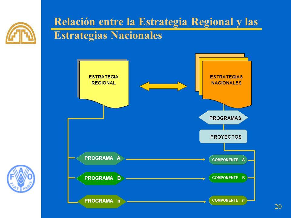20 Relación entre la Estrategia Regional y las Estrategias Nacionales COMPONENTE A PROYECTOS PROGRAMAS ESTRATEGIA REGIONAL ESTRATEGIA REGIONAL PROGRAM