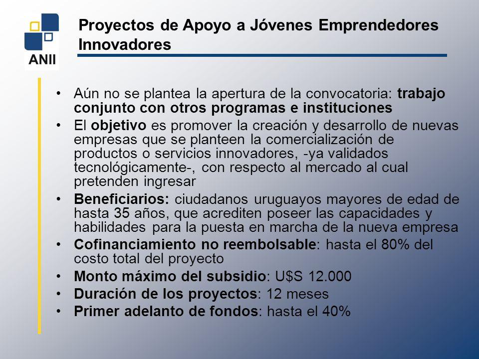 Proyectos de Apoyo a Jóvenes Emprendedores Innovadores Aún no se plantea la apertura de la convocatoria: trabajo conjunto con otros programas e instit