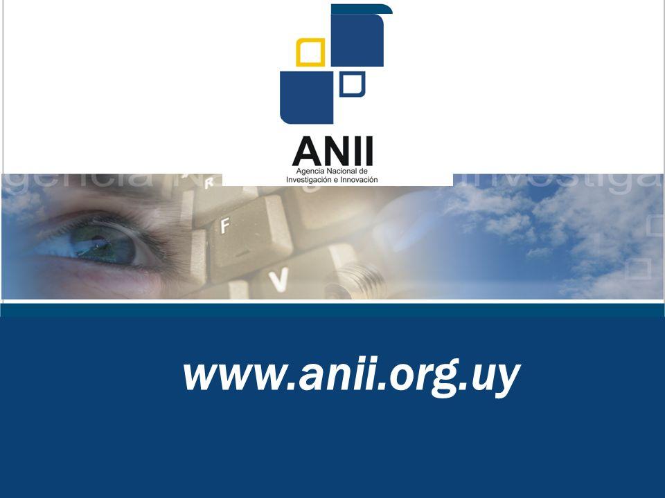www.anii.org.uy