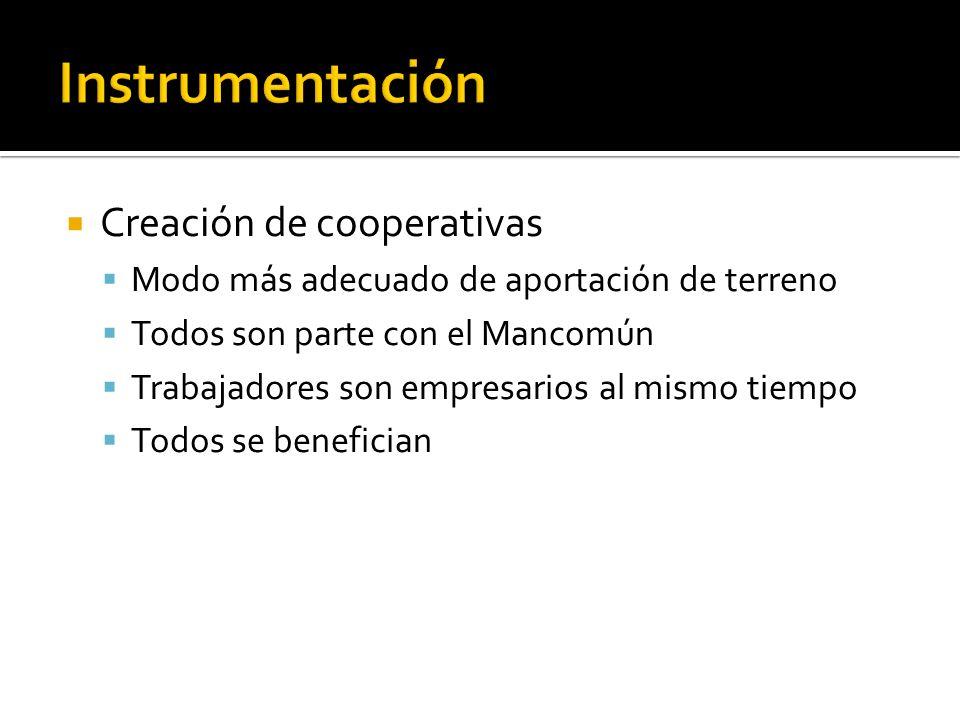 Creación de cooperativas Modo más adecuado de aportación de terreno Todos son parte con el Mancomún Trabajadores son empresarios al mismo tiempo Todos se benefician