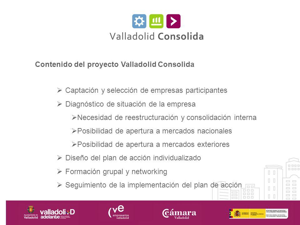 Contenido del proyecto Valladolid Consolida Captación y selección de empresas participantes Diagnóstico de situación de la empresa Necesidad de reestr