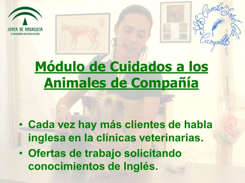 Módulo de Cuidados a los Animales de Compañía Cada vez hay más clientes de habla inglesa en la clínicas veterinarias.