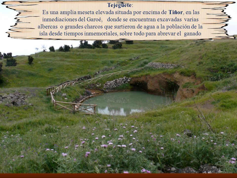 Paisaje conocido como Lomo Romero, en el Norte de la isla, una delicia caminar por este lugar en primavera
