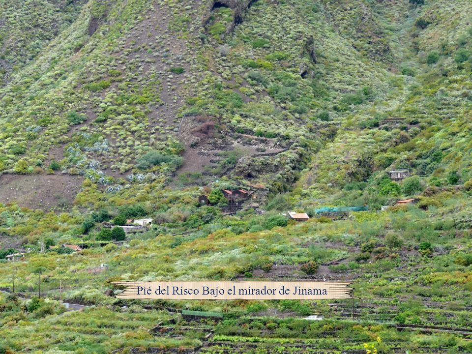 Tejegüete: Es una amplia meseta elevada situada por encima de Tiñor, en las inmediaciones del Garoé, donde se encuentran excavadas varias albercas o g