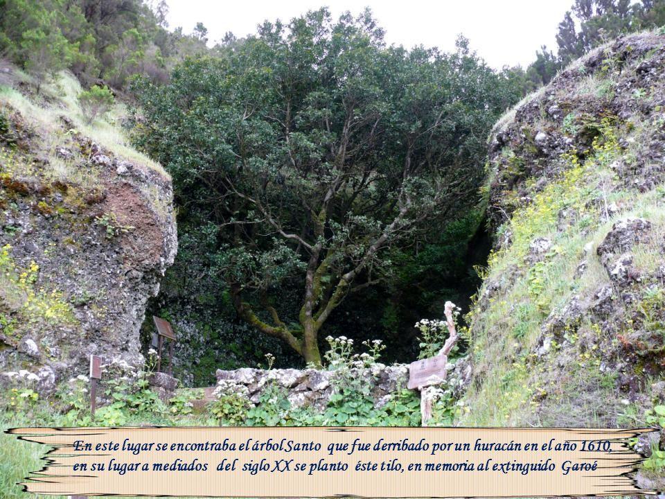 Situado en el municipio de El Pinar, Hasta 1492, se creía que Orchilla era el final del mundo, que más allá estaba el Océano Tenebroso habitado por fe