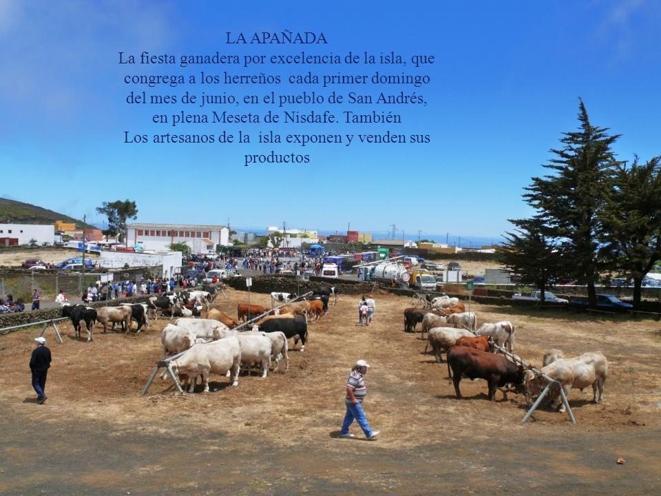 EL CARACOL Donde se encuentra la Cueva de la Virgen y otras donde los pastores habitaban para pastorear sus ganados en La Dehesa. En esta ocasión La f