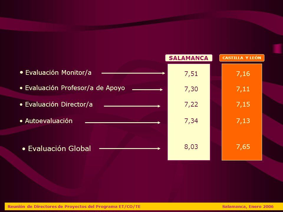 Evaluación Monitor/a Evaluación Profesor/a de Apoyo Evaluación Director/a Autoevaluación SALAMANCA CASTILLA Y LEÓN 7,51 7,30 7,22 7,34 8,03 7,16 7,11 7,15 7,13 7,65 Evaluación Global