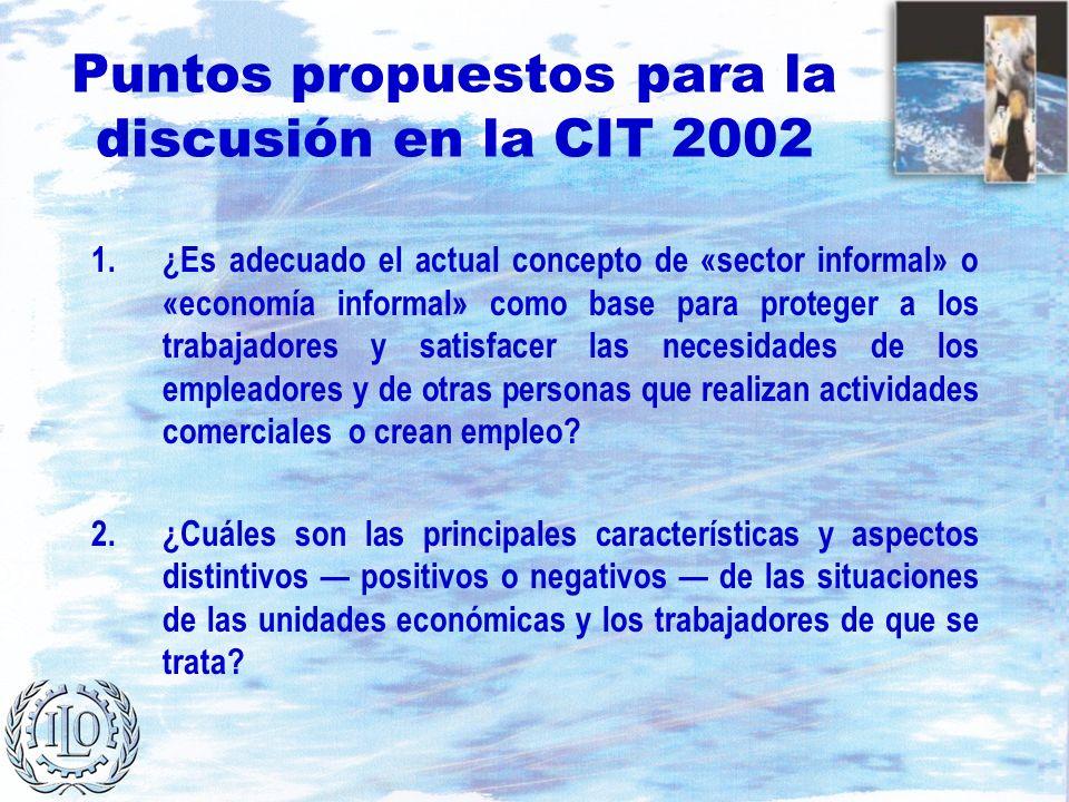 Puntos propuestos para la discusión en la CIT 2002 1.¿Es adecuado el actual concepto de «sector informal» o «economía informal» como base para protege