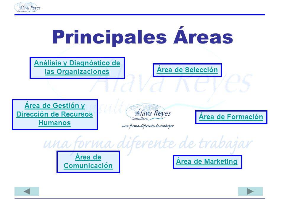 Principales Áreas Análisis y Diagnóstico de las Organizaciones Área de Formación Área de Selección Área de Gestión y Dirección de Recursos Humanos Áre