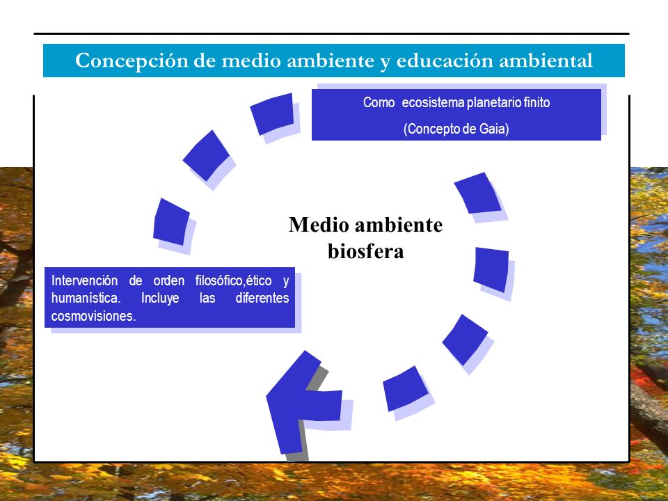 Concepción de medio ambiente y educación ambiental Medio ambiente biosfera Como ecosistema planetario finito (Concepto de Gaia) Como ecosistema planet