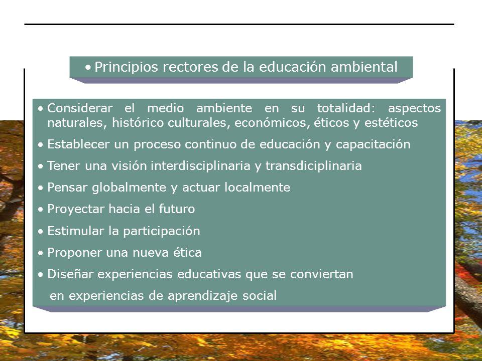 Principios rectores de la educación ambiental Considerar el medio ambiente en su totalidad: aspectos naturales, histórico culturales, económicos, étic