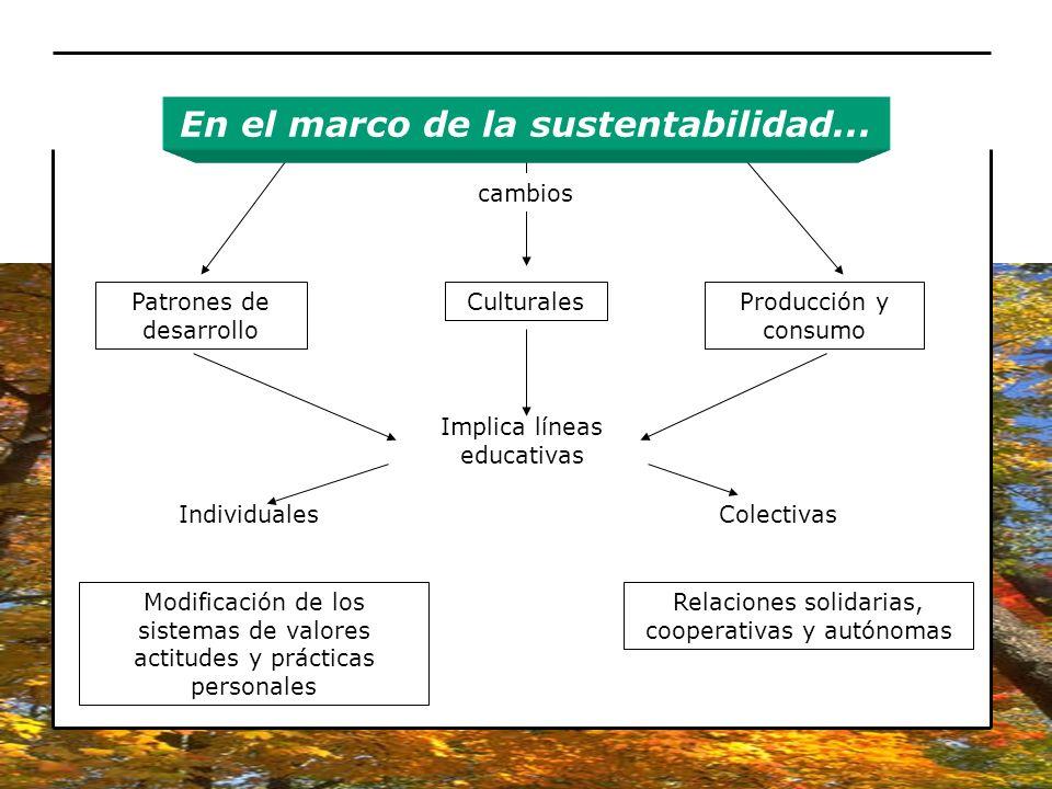 cambios Patrones de desarrollo CulturalesProducción y consumo Implica líneas educativas IndividualesColectivas Modificación de los sistemas de valores