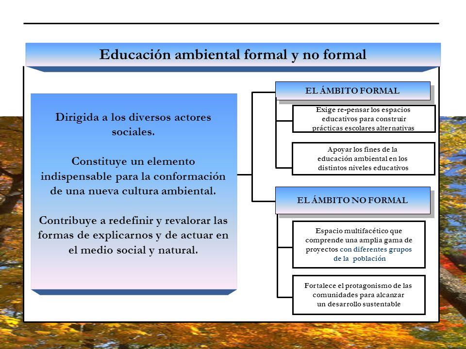 EL ÁMBITO FORMAL Educación ambiental formal y no formal Dirigida a los diversos actores sociales. Constituye un elemento indispensable para la conform
