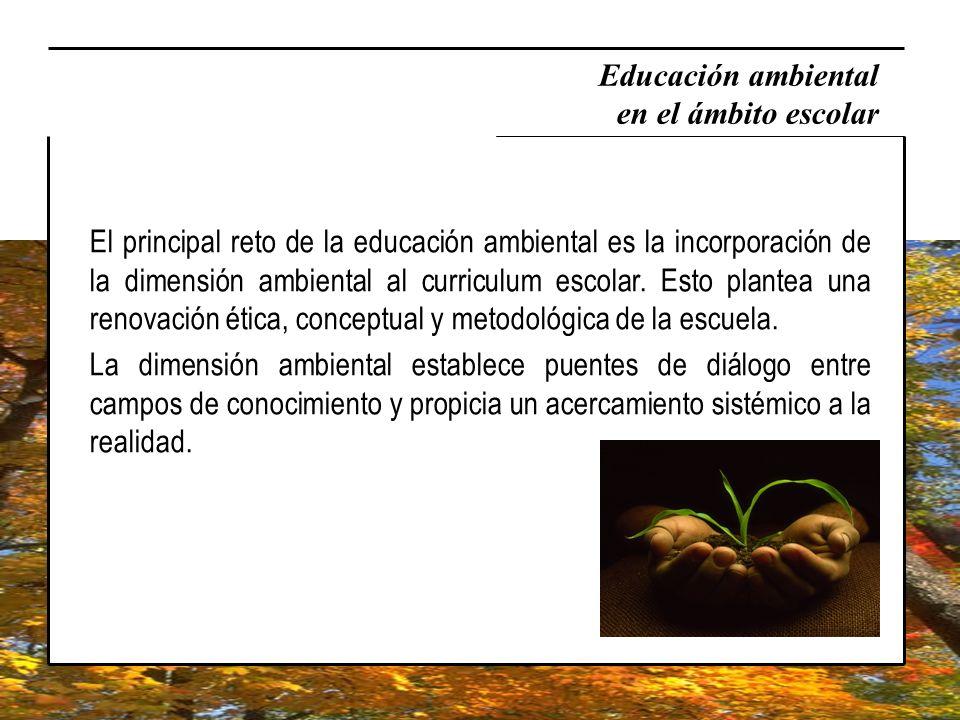 El principal reto de la educación ambiental es la incorporación de la dimensión ambiental al curriculum escolar. Esto plantea una renovación ética, co