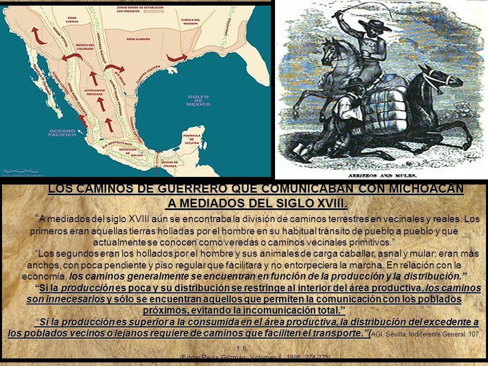 LOS CAMINOS DE GUERRERO QUE COMUNICABAN CON MICHOACÁN A MEDIADOS DEL SIGLO XVIII.