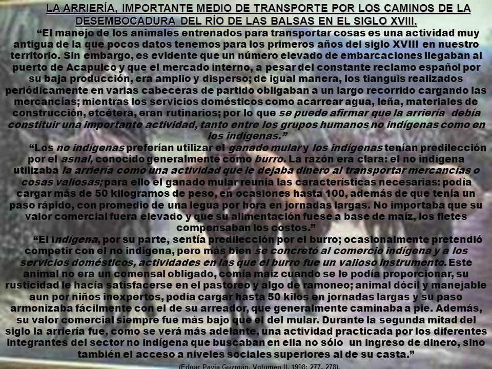 LA ARRIERÍA, IMPORTANTE MEDIO DE TRANSPORTE POR LOS CAMINOS DE LA DESEMBOCADURA DEL RÍO DE LAS BALSAS EN EL SIGLO XVIII.