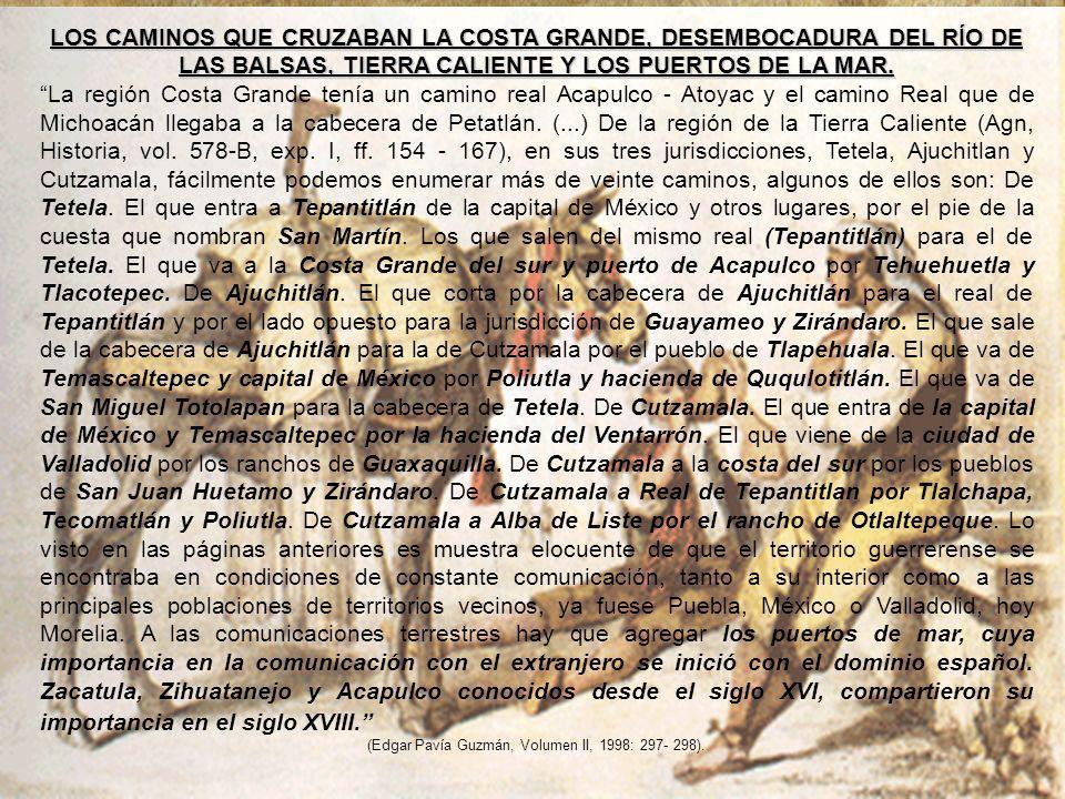 LOS CAMINOS QUE CRUZABAN LA COSTA GRANDE, DESEMBOCADURA DEL RÍO DE LAS BALSAS, TIERRA CALIENTE Y LOS PUERTOS DE LA MAR.