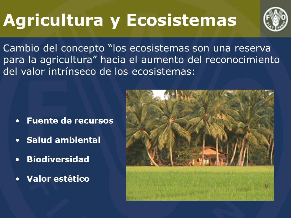 Agricultura y Ecosistemas Cambio del concepto los ecosistemas son una reserva para la agricultura hacia el aumento del reconocimiento del valor intrínseco de los ecosistemas: Fuente de recursos Salud ambiental Biodiversidad Valor estético