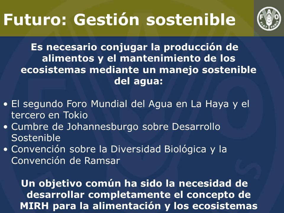 Futuro: Gestión sostenible Es necesario conjugar la producción de alimentos y el mantenimiento de los ecosistemas mediante un manejo sostenible del agua: El segundo Foro Mundial del Agua en La Haya y el tercero en Tokio Cumbre de Johannesburgo sobre Desarrollo Sostenible Convención sobre la Diversidad Biológica y la Convención de Ramsar Un objetivo común ha sido la necesidad de desarrollar completamente el concepto de MIRH para la alimentación y los ecosistemas