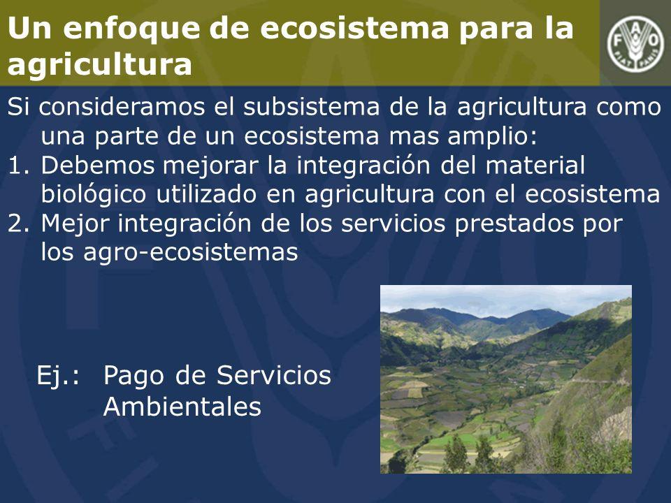 Un enfoque de ecosistema para la agricultura Si consideramos el subsistema de la agricultura como una parte de un ecosistema mas amplio: 1.Debemos mejorar la integración del material biológico utilizado en agricultura con el ecosistema 2.Mejor integración de los servicios prestados por los agro-ecosistemas Ej.:Pago de Servicios Ambientales