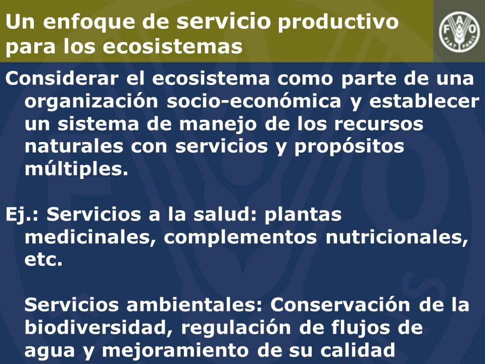 Un enfoque de servicio productivo para los ecosistemas Considerar el ecosistema como parte de una organización socio-económica y establecer un sistema de manejo de los recursos naturales con servicios y propósitos múltiples.