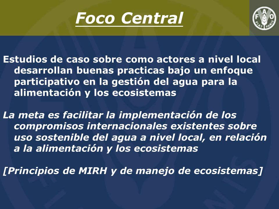 Foco Central Estudios de caso sobre como actores a nivel local desarrollan buenas practicas bajo un enfoque participativo en la gestión del agua para la alimentación y los ecosistemas La meta es facilitar la implementación de los compromisos internacionales existentes sobre uso sostenible del agua a nivel local, en relación a la alimentación y los ecosistemas [Principios de MIRH y de manejo de ecosistemas]