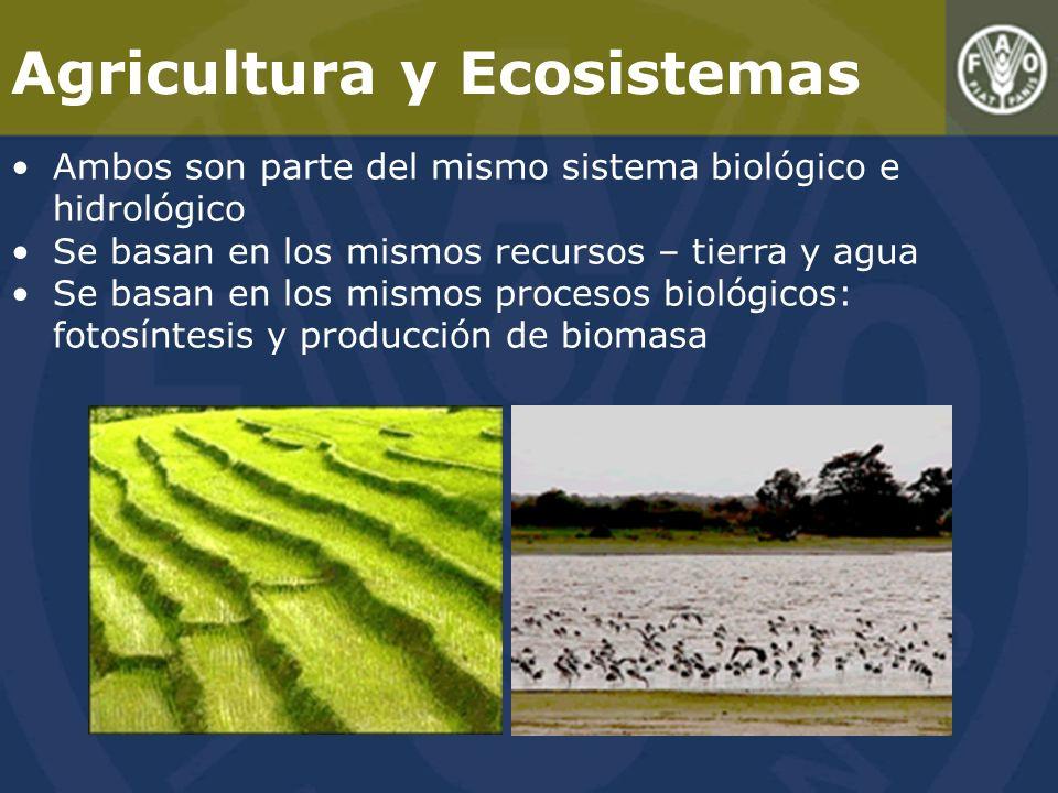 Agricultura y Ecosistemas Ambos son parte del mismo sistema biológico e hidrológico Se basan en los mismos recursos – tierra y agua Se basan en los mismos procesos biológicos: fotosíntesis y producción de biomasa