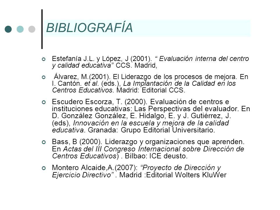 Estefanía J.L. y López, J (2001). Evaluación interna del centro y calidad educativa CCS. Madrid, Álvarez, M.(2001). El Liderazgo de los procesos de me