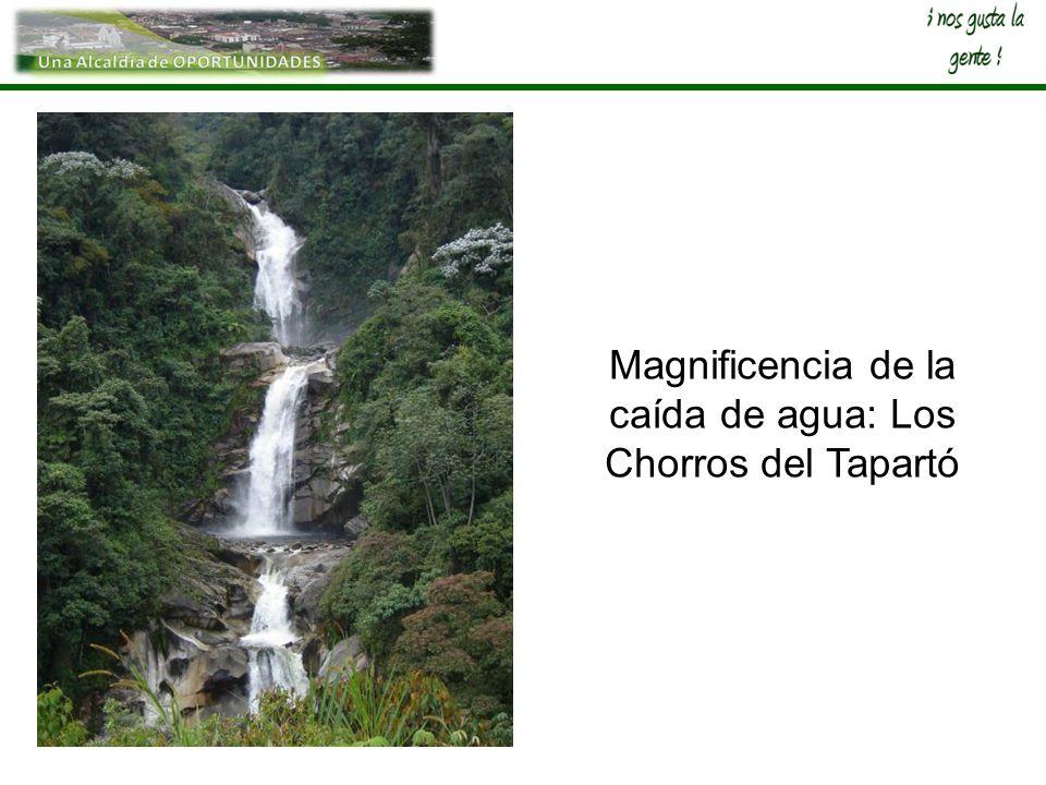 Magnificencia de la caída de agua: Los Chorros del Tapartó