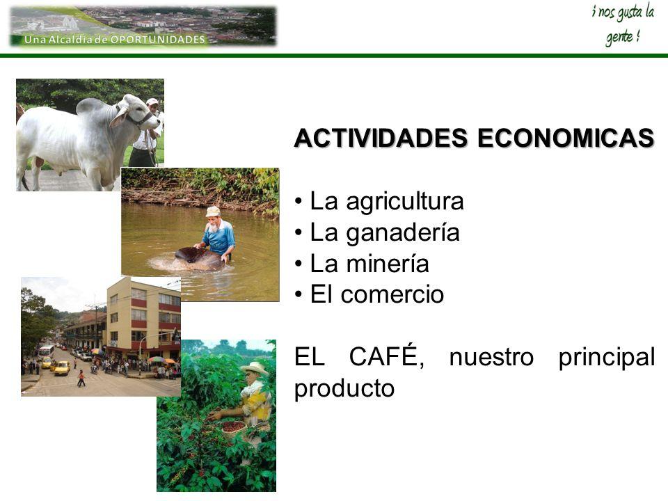 ACTIVIDADES ECONOMICAS La agricultura La ganadería La minería El comercio EL CAFÉ, nuestro principal producto