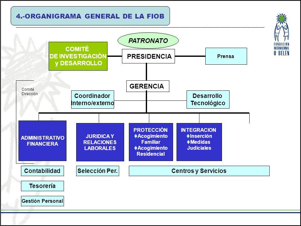 4.-ORGANIGRAMA GENERAL DE LA FIOB __________________________________________________________________________ PATRONATO Desarrollo Tecnológico PROTECCI