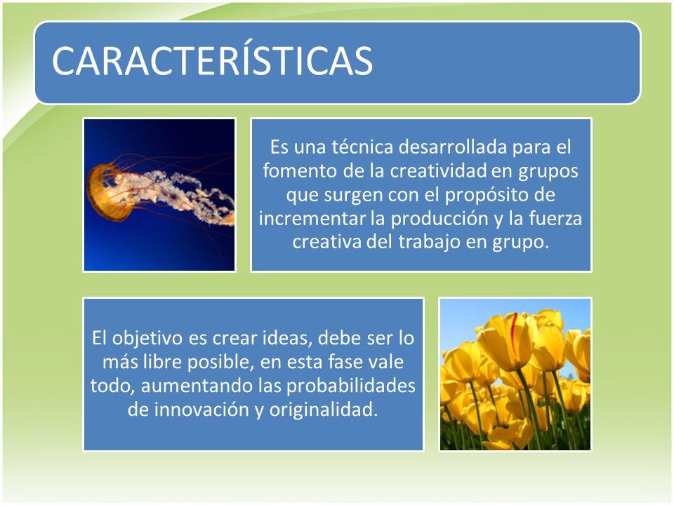 CARACTERÍSTICAS Es una técnica desarrollada para el fomento de la creatividad en grupos que surgen con el propósito de incrementar la producción y la