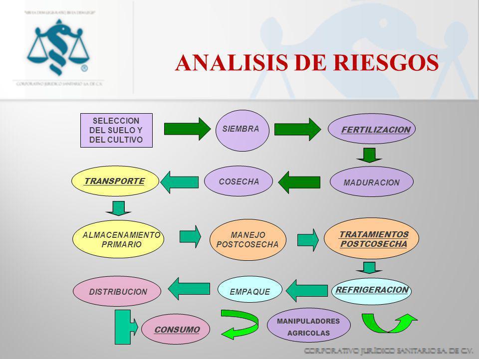 ANALISIS DE RIESGOS ALMACENAMIENTO PRIMARIO DISTRIBUCION SELECCION DEL SUELO Y DEL CULTIVO SIEMBRA FERTILIZACION MADURACION COSECHA TRANSPORTE MANEJO POSTCOSECHA TRATAMIENTOS POSTCOSECHA REFRIGERACION EMPAQUE CONSUMO MANIPULADORES AGRICOLAS