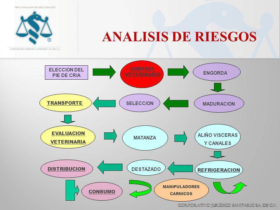 ANALISIS DE RIESGOS ELECCION DEL PIE DE CRIA CONTROL VETERINARIO ENGORDA MADURACION SELECCION TRANSPORTE EVALUACION VETERINARIA MATANZA ALIÑO VISCERAS Y CANALES REFRIGERACION DESTAZADO DISTRIBUCION CONSUMO MANIPULADORES CARNICOS